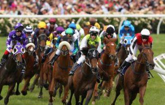 Como apostar em Cavalos